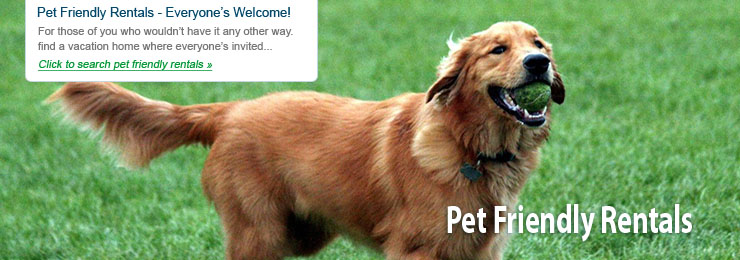 Pet Friendly Rentals - Everyone's Welcome